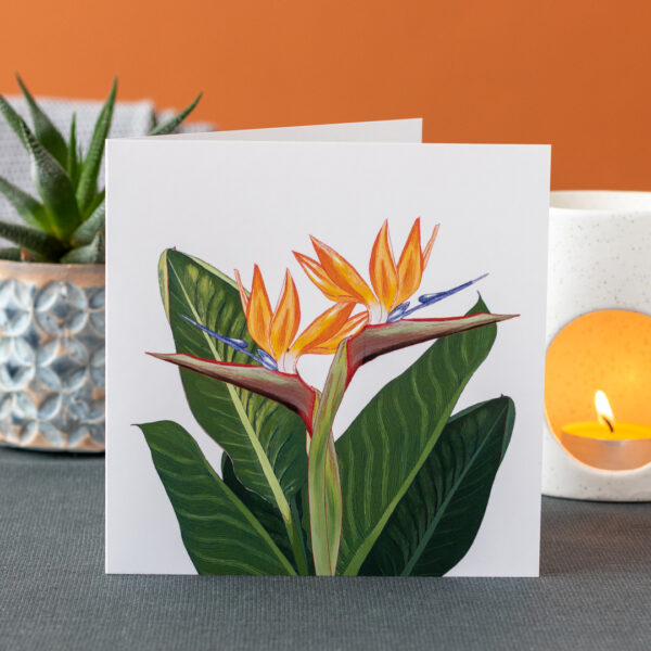Photo of a greeting card featuring Strelitzia flowers and leaves on a white background