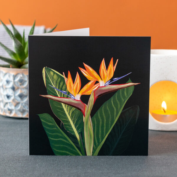 Photo of a greeting card featuring Strelitzia flowers and leaves on a dark background